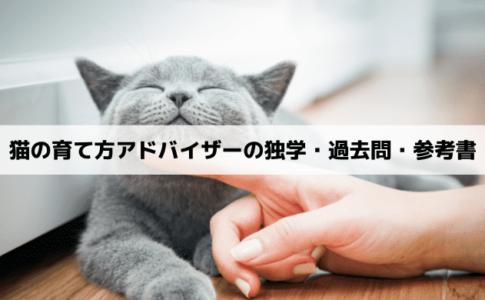猫の育て方アドバイザーは独学で取得できない?過去問と参考書について解説